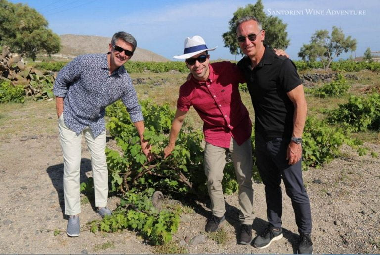 Private Tour: Great Wines and Famous Towns
